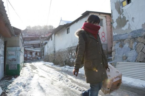 Hye-hwa helps stay dogs in the barren landscape