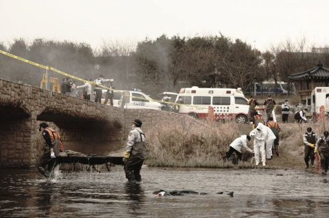 Bodies begin mysteriously appearing in rivers, with the cause of death unknown