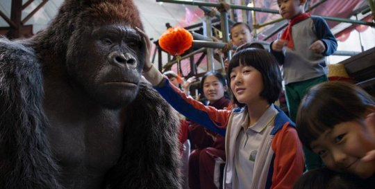 Gorilla Ling Ling and trainer Wei-wei form an loving bond in the circus